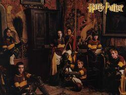 Equipo Quidditch Gryffindor.jpg