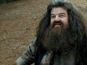 Hagrid1993.jpg