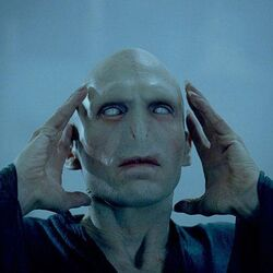 P4 Voldemort resusitando.jpg
