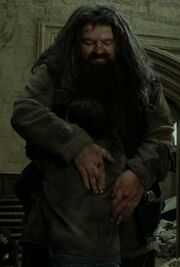 Hagrid hugs Harry.jpg