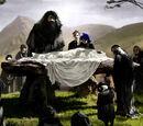 Funeral de Albus Dumbledore
