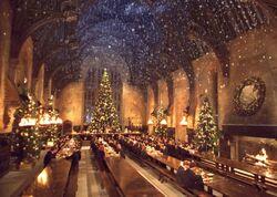 P2 Navidad Hogwarts 1992.jpg