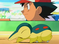Archivo:EP270 Cyndaquil y Ash.png