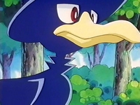Archivo:EP186 Murkrow (7).png