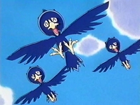 Archivo:EP186 Murkrow (5).png