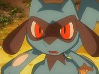 Archivo:EP540 Riolu (6).png