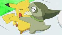 EP668 Axew peleando con pikachu.jpg