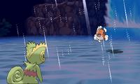 Danza lluvia ROZA