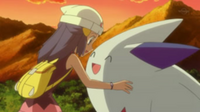 EP641 Dawn and Togekiss