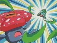 Archivo:EP180 Bulbasaur vs Vileplume.jpg