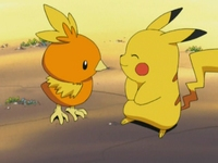 Archivo:EP277 Torchic y Pikachu.png