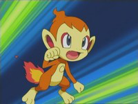 Archivo:EP471 Chimchar de Polo.png