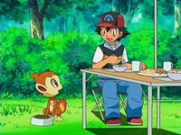 Archivo:EP522 Chimchar sorprendido por el tratamiento de Ash y sus amigos.png