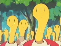 Archivo:EP172 Shuckle (3).png