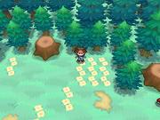 Claro oculto del Bosque Perdidos.