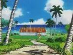 EP087 Gimnasio Pokémon de Isla Mikan.jpg