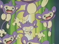 EP169 Aipom (3).png