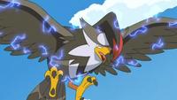EP600 Staraptor luego de usar pájaro osado