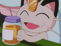 Archivo:EP133 Meowth con savia dulce.png