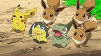 EP797 Eevee conociendo a Pikachu, Axew y Helioptile.png