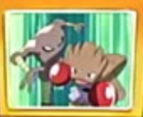 Archivo:EP459 Hitmonlee y Hitmonchan en pantalla.jpg