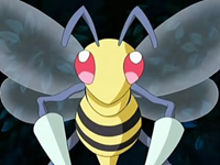 Archivo:EP514 Beedrill.png