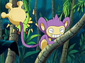 EP424 Aipom.png