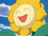 Archivo:EP189 Sunflora.png