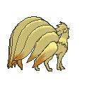 Imagen posterior de Ninetales en la sexta generación