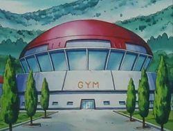 Gimnasio de Trigal