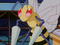 Archivo:EP163 Beedrill (3).png