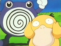 Archivo:EP157 Psyduck y Poliwhirl.png