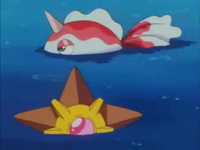 Archivo:EP170 Staryu y Goldeen.png