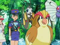 Archivo:EP533 Pokémon del vivero (4).png
