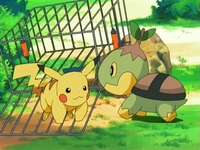 Archivo:EP474 Turtwig liberando a Pikachu.jpg