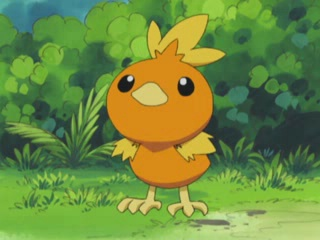 Archivo:EP278 Torchic de May-Aura.jpg