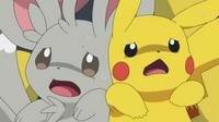 EP724 Minccino y Pikachu asustados