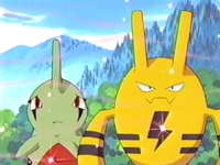 Archivo:EP263 Elekid y Larvitar oliendo dulce aroma.png