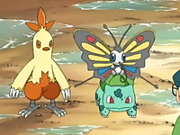 EP392 Combusken, Bulbasaur y Beautifly