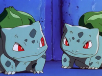 Bulbasaurtwo y el Bulbasaur de Ash