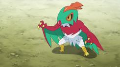 Hawlucha de Ash