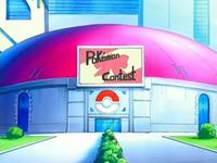 Archivo:EP480 Concurso Pokémon de Jubileo (3).png