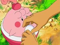 Archivo:EP507 Brock dando su piedra a Happiny.png