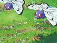 Archivo:EP254 Butterfree.png