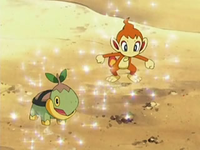 Archivo:EP534 Chimchar y Turtwig.png