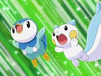Archivo:EP566 Piplup y Pachirisu.png