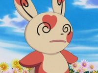Archivo:EP333 Spinda (4).png