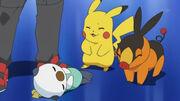 EP666 Pikachu, Oshawott y Tepig despues de la batalla.jpg