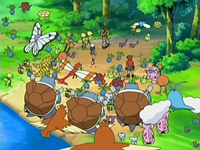 Archivo:EP541 Pokémon del bosque.png