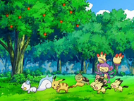 EP553 Pokémon jugando
